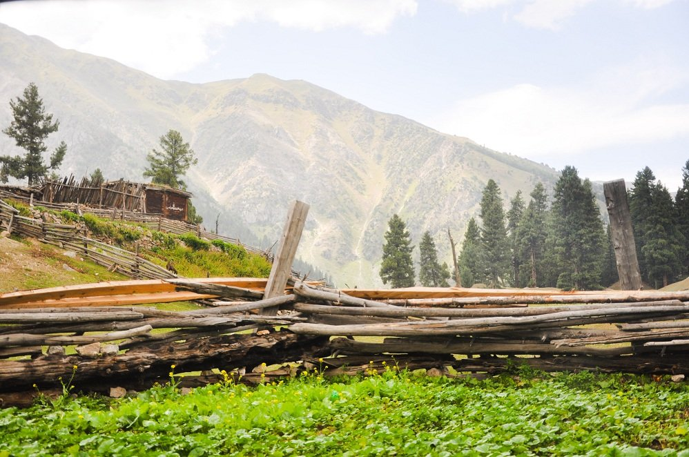 Road Trip to Fairy Meadows