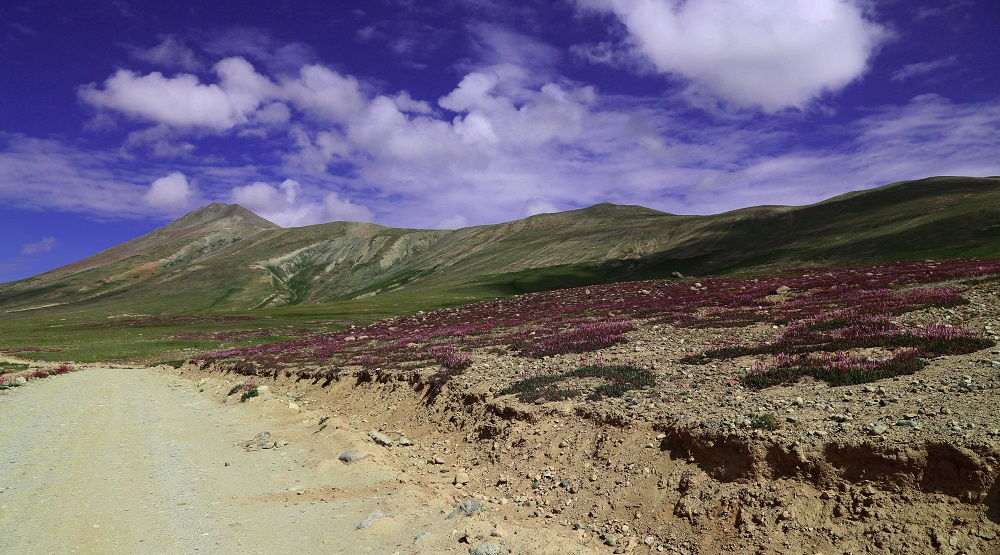 Beautiful View of Deosai Plains