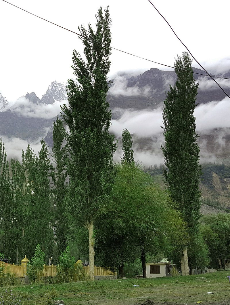 Beautiful View Hunza