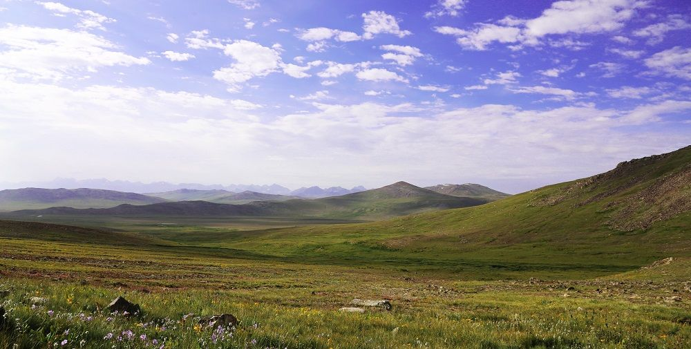 Endless Land Deosai Plains