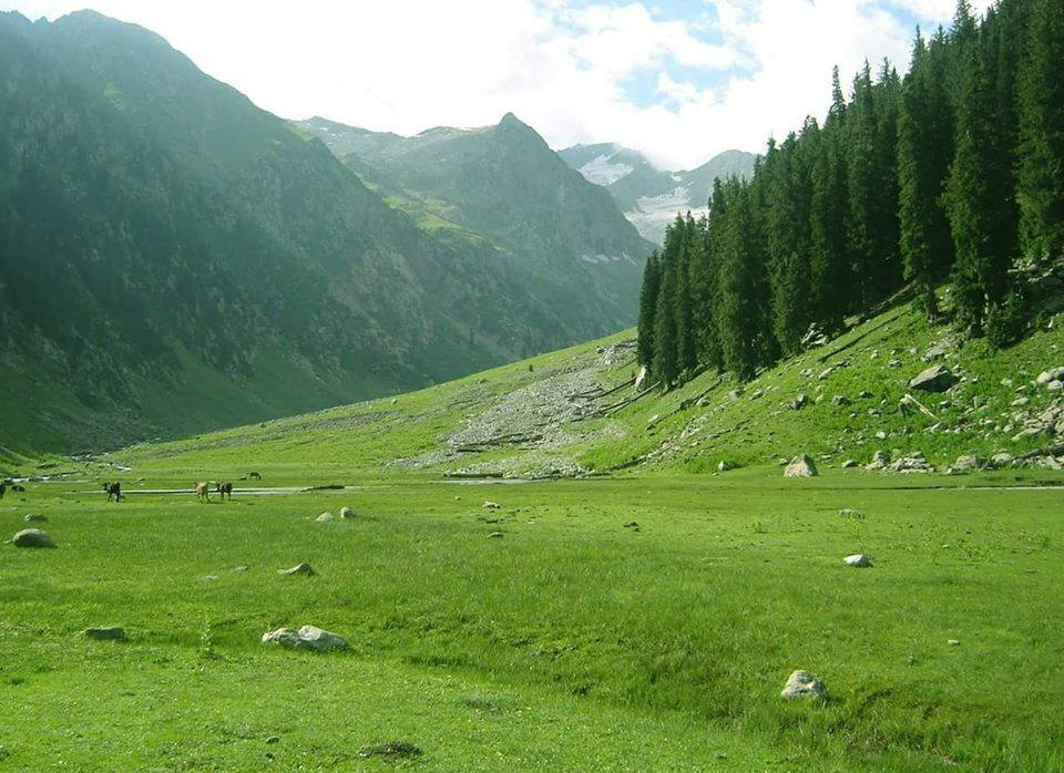Lush green meadows in Kumrat Valley