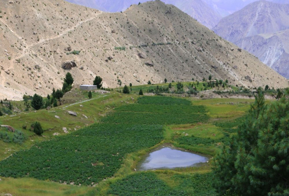 Small Lake in Rama Valley