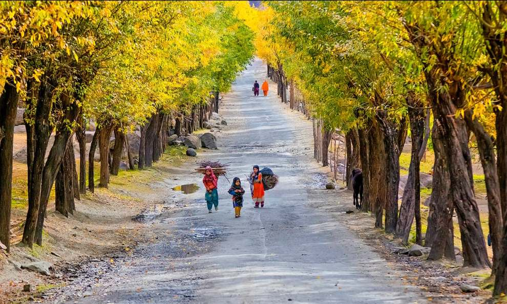 Beautiful roadside view in Skardu