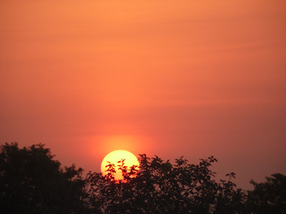 Sunset in Baddomalhi
