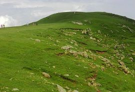 Lush Green view of Toli Pir
