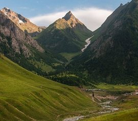 Lushgreen Valley Minimarg