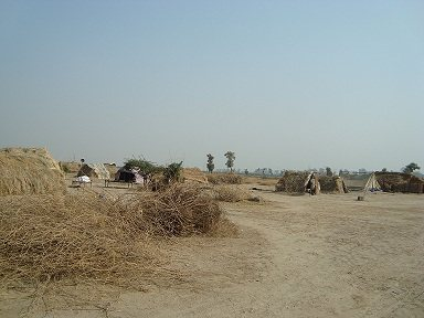 A Village in Toba Tek Singh