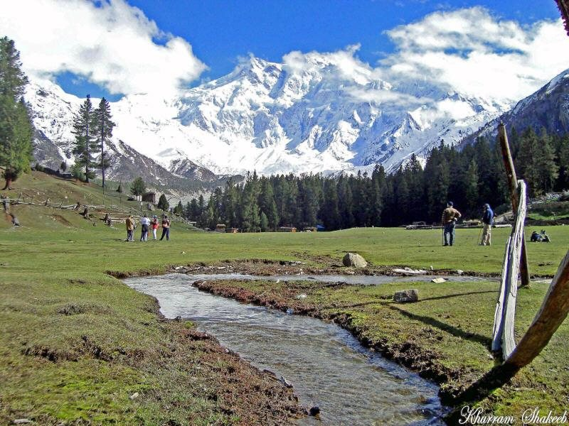 green field of fairy meadows