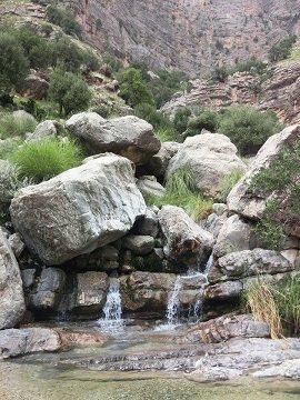 Spring in Ziarat